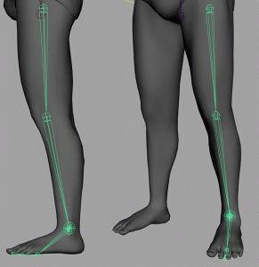 Суставы ног