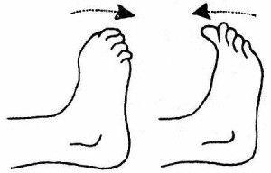 Сгибание пальцев ног