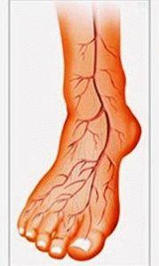 Кровообращение в стопах