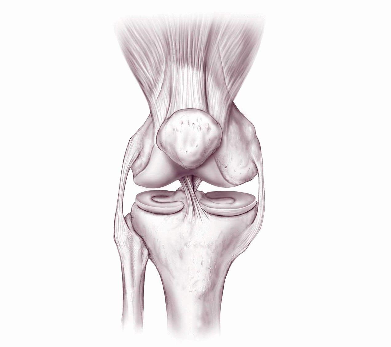 Боли в коленном суставе в чем причина и чем лечить
