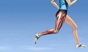 Воспаление мышц ног