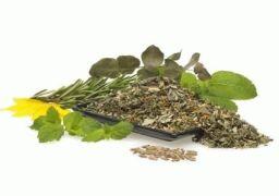 Травяные сборы при артрите