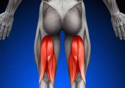 Болит задняя поверхность бедра: причины и лечение