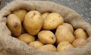 Картофель от артрита