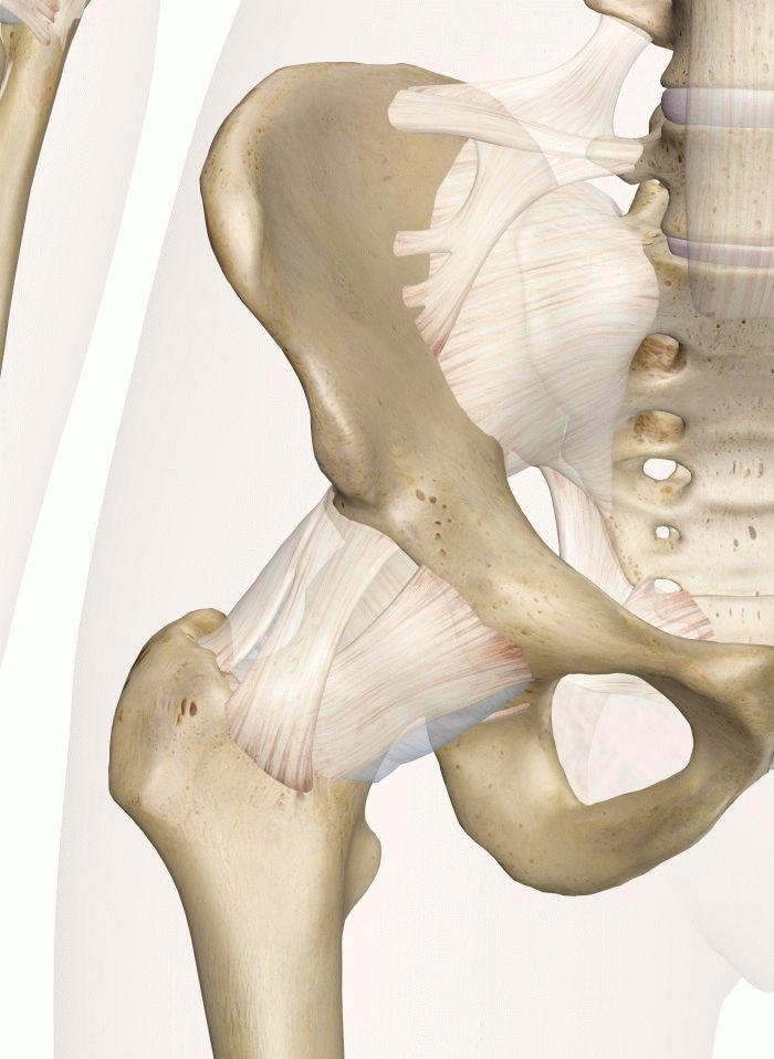 Боль в тазобедренном суставе при ходьбе причины и лечение почему болит