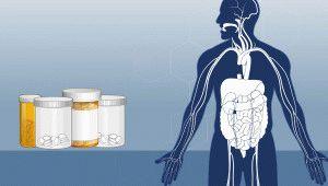 Лечение организма лекарствами