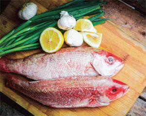 Выбирайте рыбу